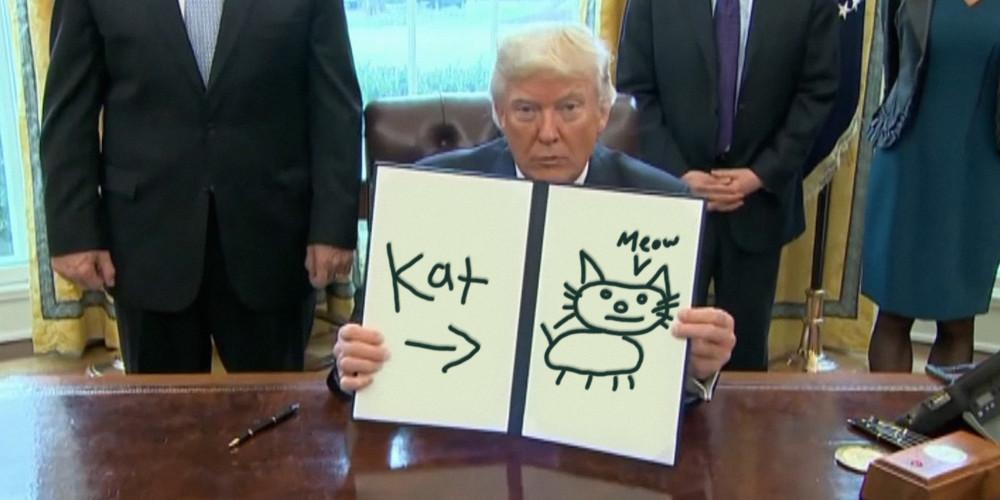 Трамп мемы